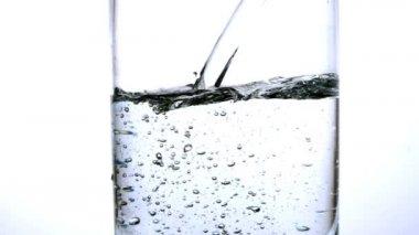 water wordt gegoten in een glas op witte achtergrond — Stockvideo #31529131