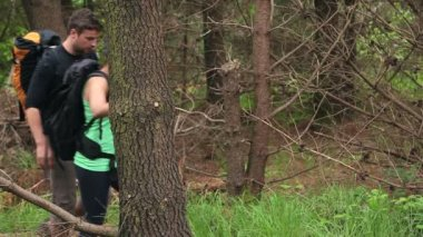 Fit couple exploring a wooded area — Stock Video