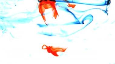Blauwe en rode inkt zwenken in water op witte achtergrond — Stockvideo