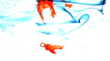 Tinta azul e vermelha, rodopiando em água no fundo branco — Vídeo Stock
