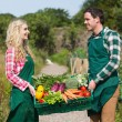 Young couple carrying vegetables — Stock Photo