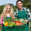 Proud young couple showing vegetables — Stock Photo #33436109