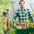 Proud man presenting vegetables in a basket — Stock Photo #33436255