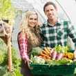 Young couple standing in their green house — Stock Photo