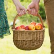 Stock Photo: Basket of apples being carried by a young couple