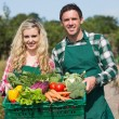 Proud couple showing vegetables in a basket — Stock Photo