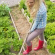 Pretty blond woman working with a rake — Stock Photo