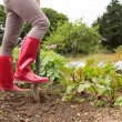 Woman wearing jeans and red rubber boots in her garden — Stock Photo