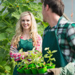 Man holding carton of small plants and turning to his smiling girlfriend — Stock Photo