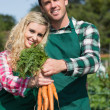Proud couple presenting carrots — Stock Photo #33439979