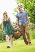 Sweet couple carrying a basket of apples — Stock Photo