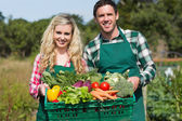 Proud young couple showing vegetables — Stockfoto