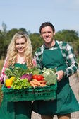 Proud couple showing vegetables in a basket — Foto Stock