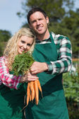 Proud couple presenting carrots — Foto Stock