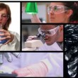 Short clips showing lab assistants — Stock Video