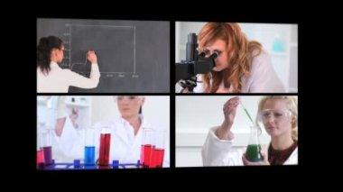 Several different short clips showing lab assistants — Stock Video