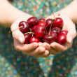 Close up of a woman holding some cherries — Stock Photo
