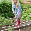 Blonde woman working with a rake — Stock Photo #33440739