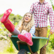 Smiling man pushing his laughing girlfriend in a wheelbarrow — Stock Photo #33442671
