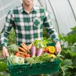 Young man presenting proudly some vegetables — Stock Photo