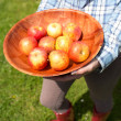 Woman holding a bowl of fresh apples — Stock Photo