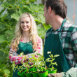 Man holding carton of small plants and turning to his girlfriend — Stock Photo #33447003
