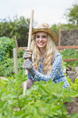 Smiling young woman holding a rake — Stock Photo