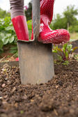 Woman wearing rubber boots using shovel — Stock Photo