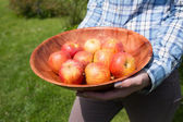 Woman holding a bowl of fresh red apples — Stock Photo