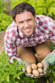 Young man holding some potatoes — Stok fotoğraf