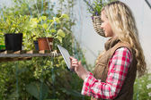Blonde woman using her tablet in a green house — Stock Photo