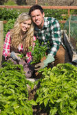 Young couple crouhing in their garden holding a plant — Stockfoto