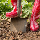 Woman wearing red rubber boots using shovel — Stock Photo