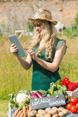 Young female farmer checking her tablet at her stall — Stock Photo