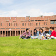 Students using laptop in lawn against college building — Stock Photo #36167875