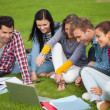 Five students sitting on the grass pointing at laptop — Stok fotoğraf