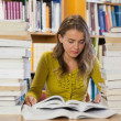Concentrating pretty student studying between piles of books — Stock Photo #36169097