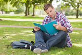 Handsome concentrating student sitting on grass studying — Stock Photo