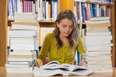 Concentrating pretty student studying between piles of books — Stock Photo