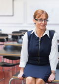 Smiling female teacher in the class room — Stockfoto
