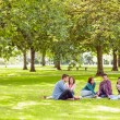 College students sitting on grass in park — Stock Photo #36171163