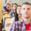 Stock Photo: Smiling female student raising hand in classroom
