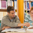 Foto Stock: Two smiling students studying together