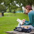 Stock Photo: Serious casual student sitting on bench taking notes