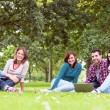 Young college students using laptop in the park — Stock Photo #36174453