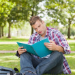 Handsome focused student sitting on grass studying — Stock Photo #36174507