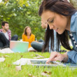 Female using tablet PC while others using laptop in park — Stok fotoğraf