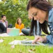 Female using tablet PC while others using laptop in park — Foto Stock