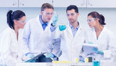 Scientists working on an experiment at the laboratory — Stock Photo