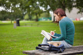 Serious casual student sitting on bench taking notes — Stock Photo
